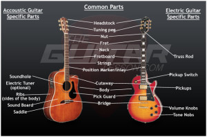 guitar-anatomy